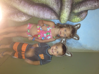 , The Great Wolf Lodge