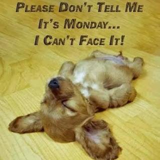 , Whew!  It's Monday!