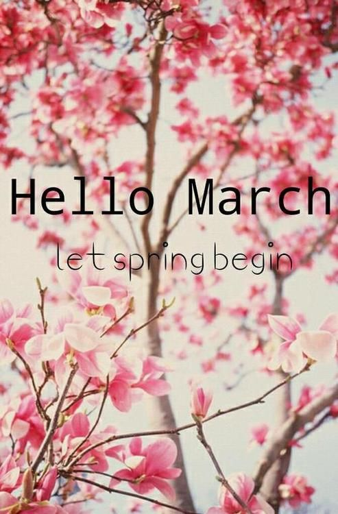 , March Pin-spired