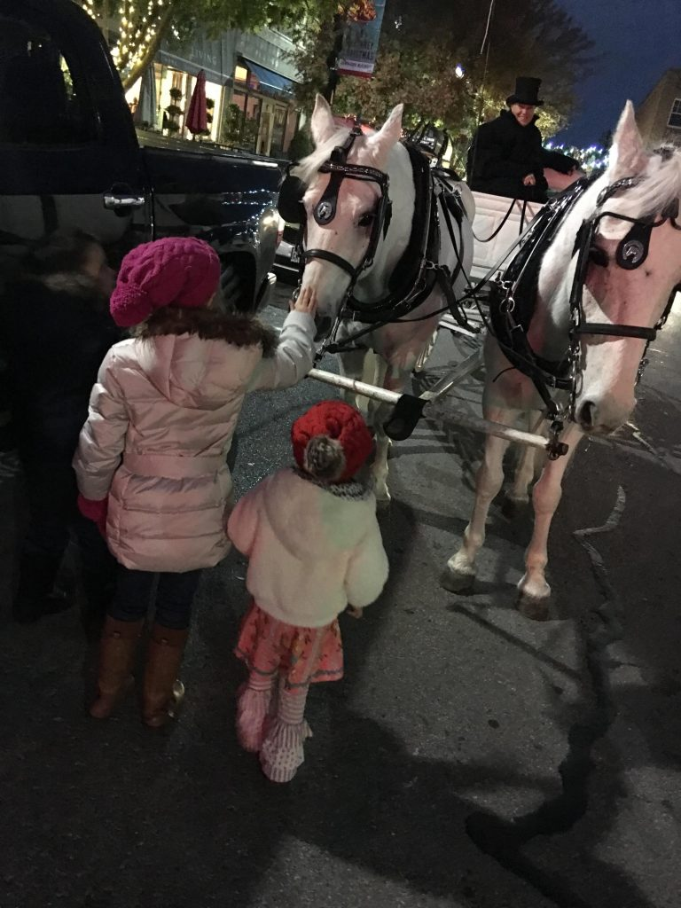 , Carriage Rides