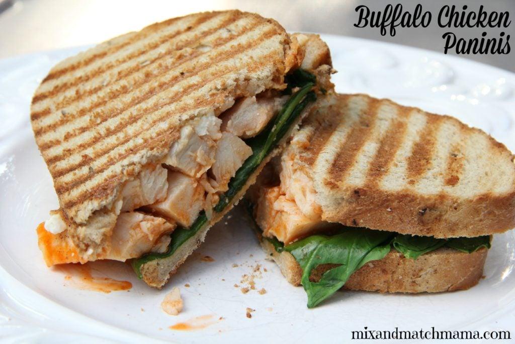 Buffalo Chicken Paninis