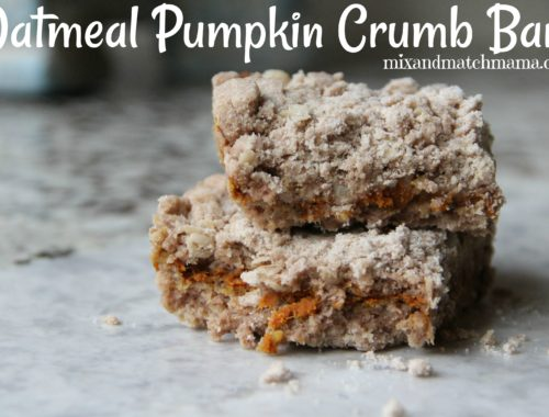 Oatmeal Pumpkin Crumb Bars